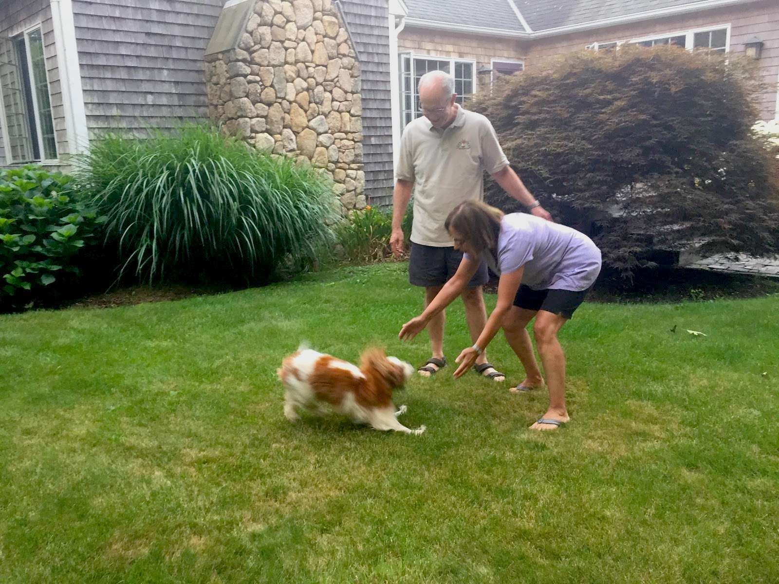 Bob and Cheryl play with their dog Spice in the grass in front of their house.
