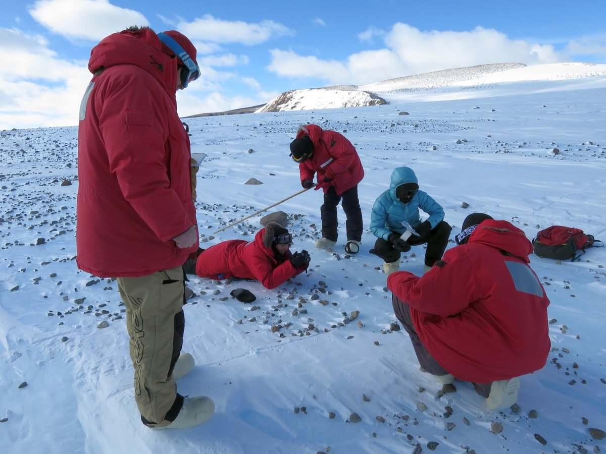 five scientists in big red jackets examine the ground for meteorites.